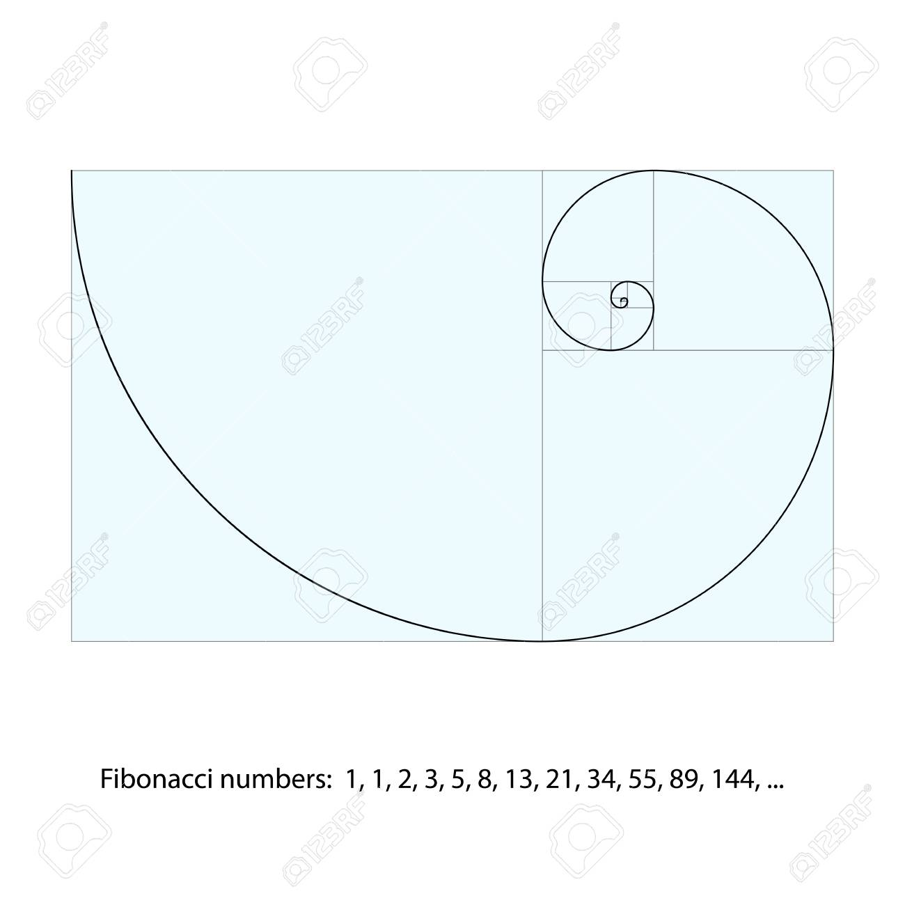 golden ratio template fibonacci spiral vector illustration numbers