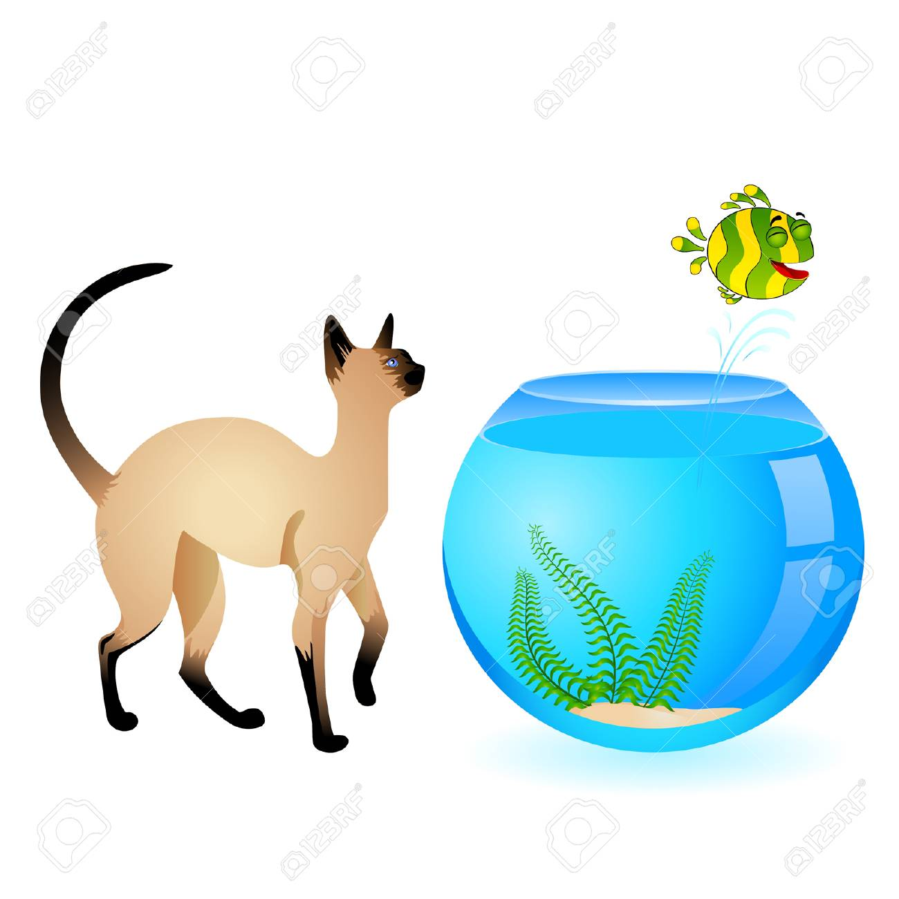 cat with little colorful tropical fish in aquarium Stock Vector - 7145251