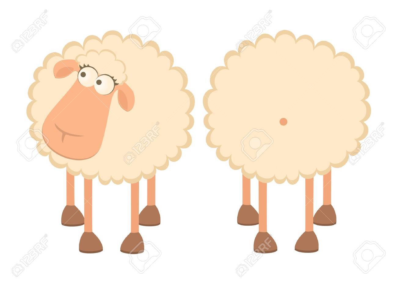 illustration of two cartoon sheep Stock Photo - 7414740