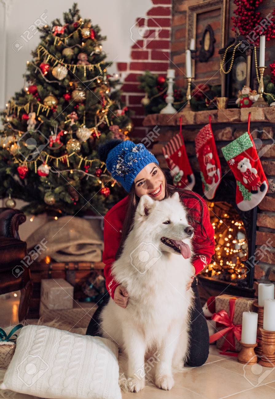 happy girl with samoyed husky dog in christmas decorations stock photo 88141389