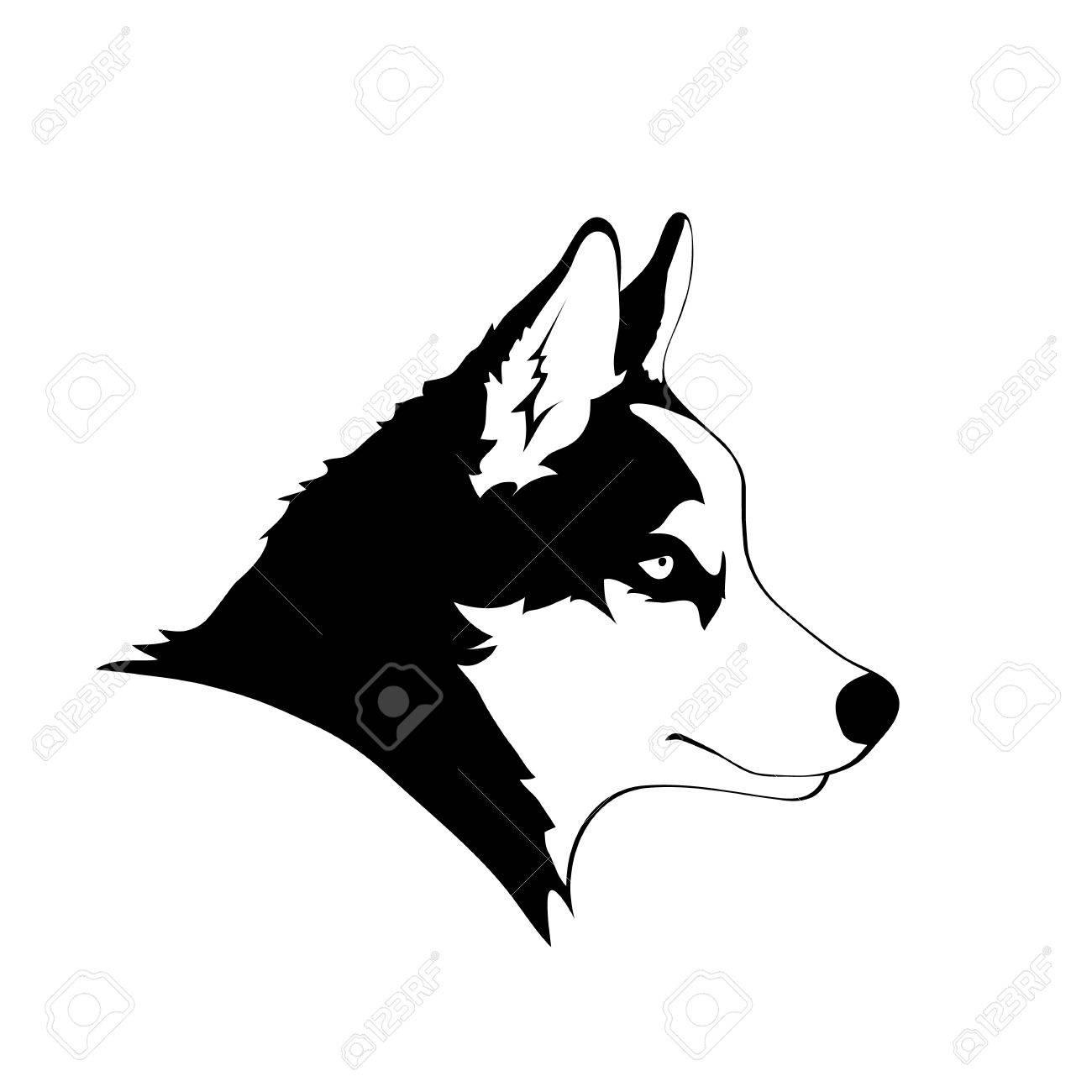 Sketch Of Siberian Husky Black And White Portrait Of Dog Vector
