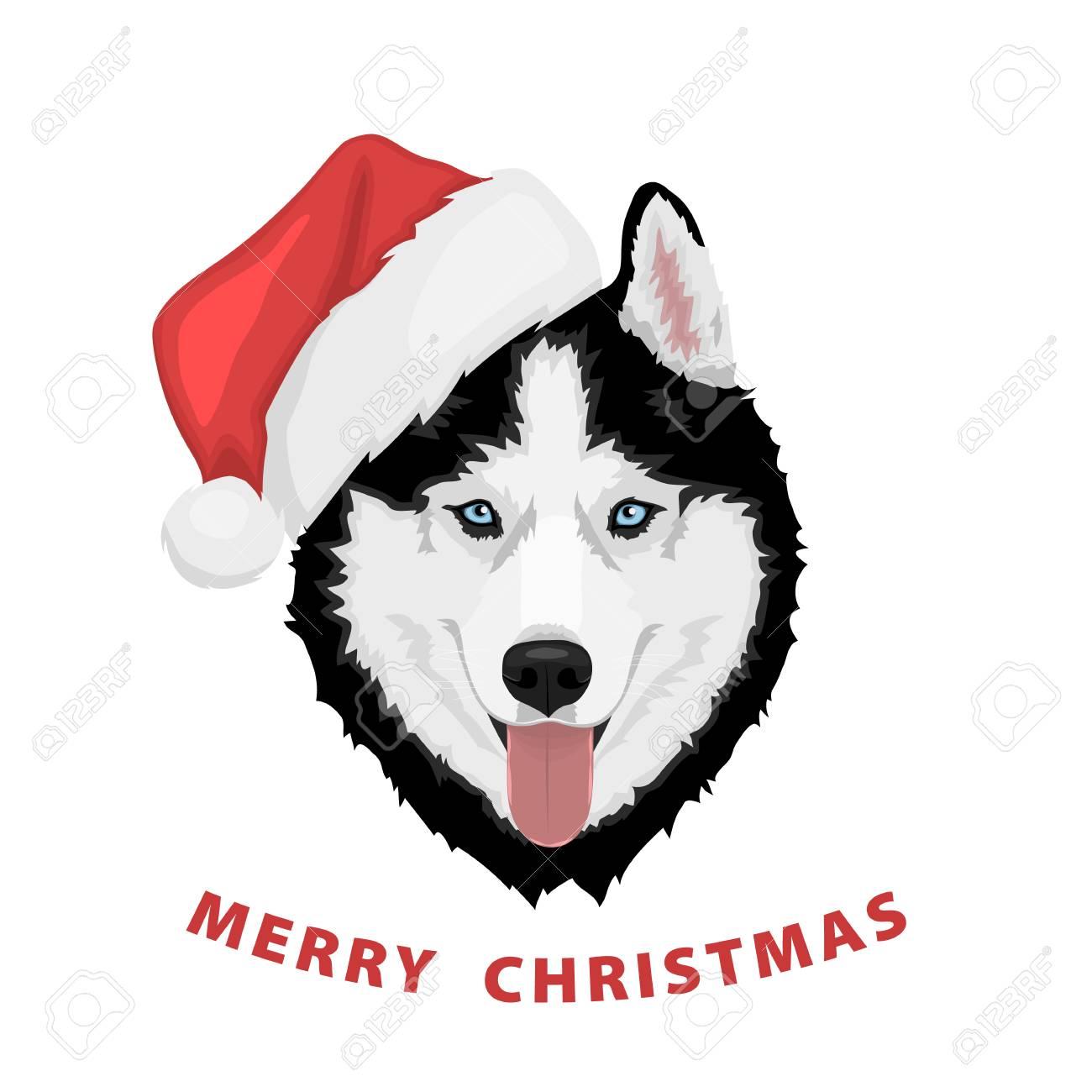 Portrait De Chien Dans Un Chapeau Rouge Du Père Noël Husky Sibérien Noir Et Blanc Aux Yeux Bleus Joyeux Noel Et Bonne Année Le Chien Est Un Symbole