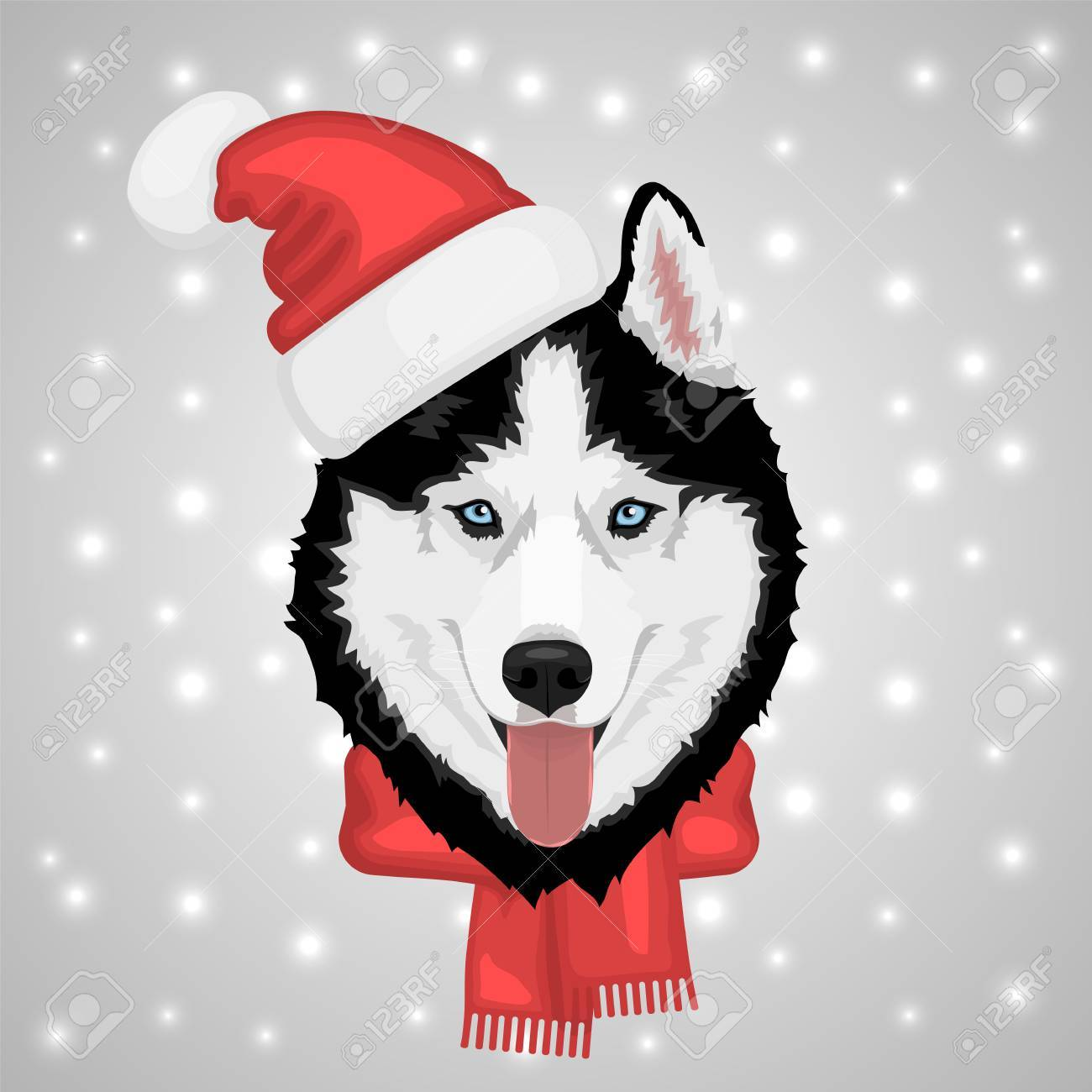 Dog Portrait In A Red Santa S Hat Black And White Siberian Husky