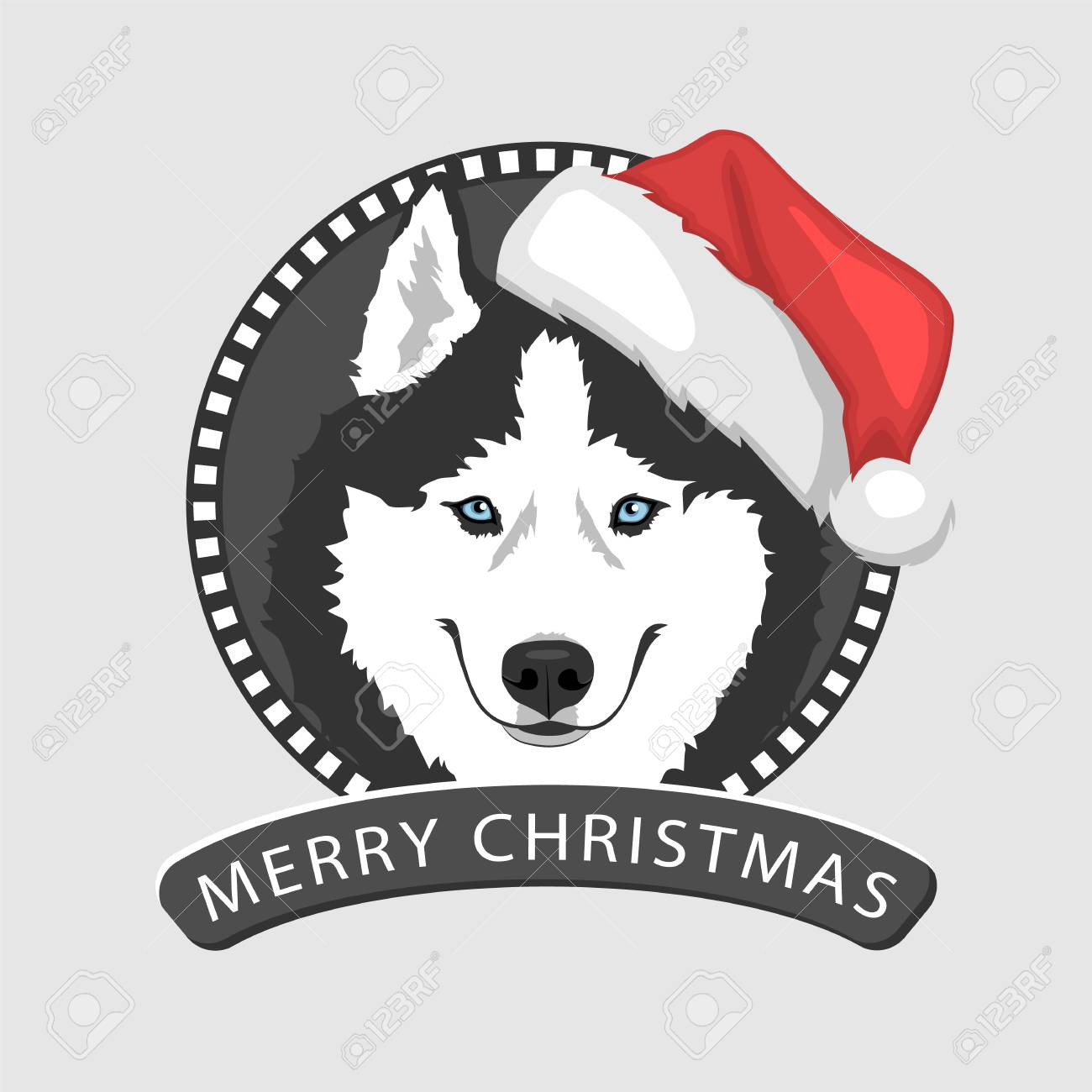 Dog portrait in a red santas hat black and white siberian husky dog portrait in a red santas hat black and white siberian husky with blue eyes buycottarizona Image collections