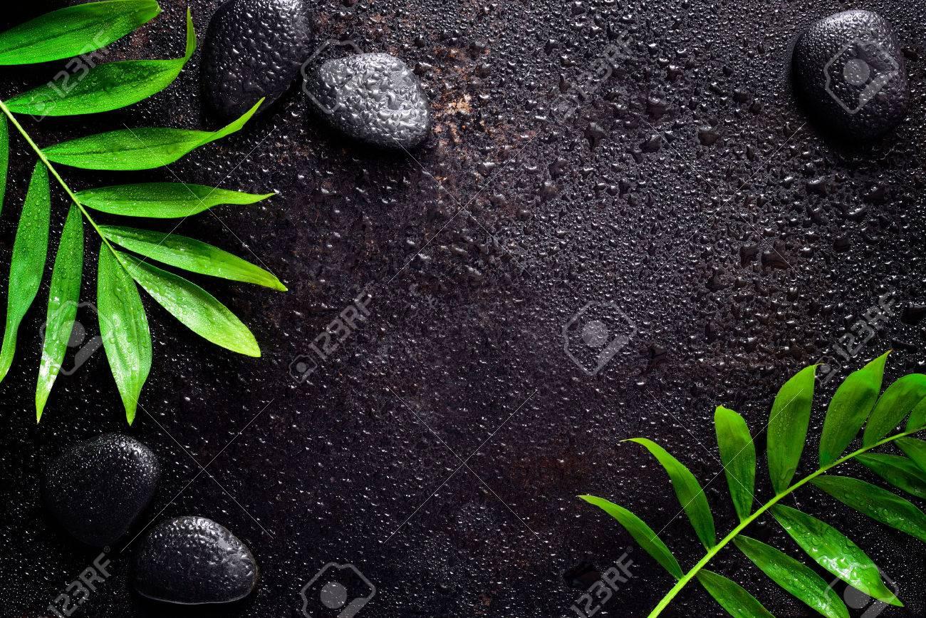 dark spa background moisturising concept palm leaves and black
