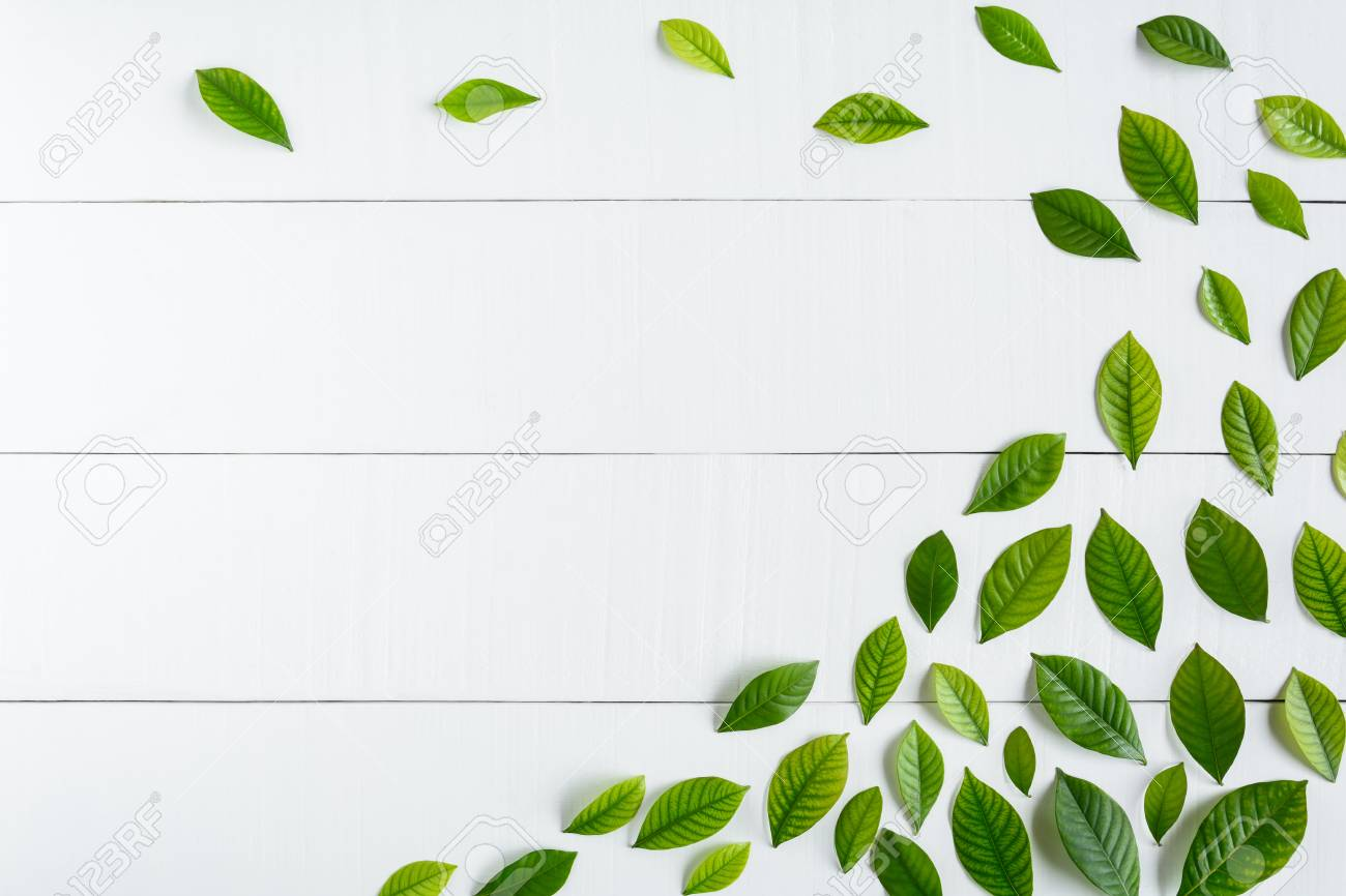 Flat Lay Green Leaf On White Wood Background With Pattern And Wallpaper Minimal Style Stock Photo