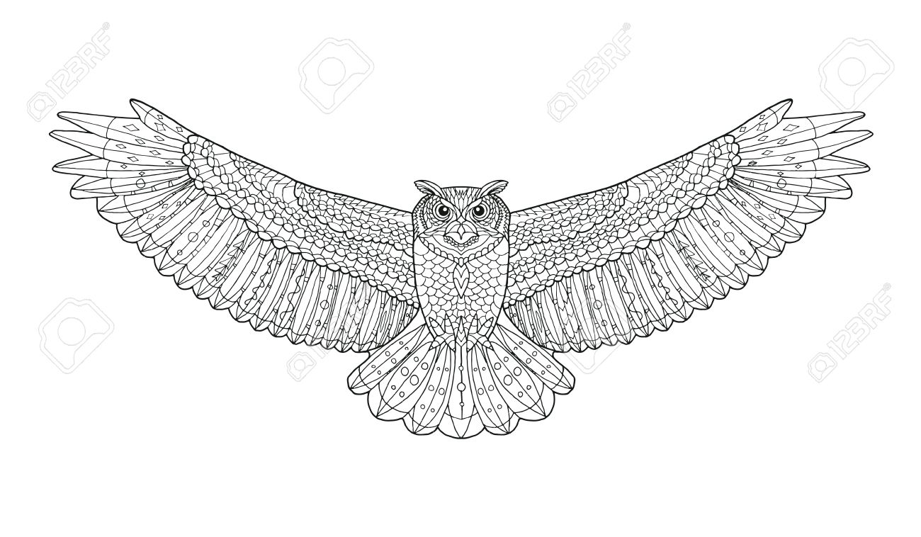 Eagle Owl Coloring Page Animal Collection Hand Drawn Doodle Ethnic Patterned Vector