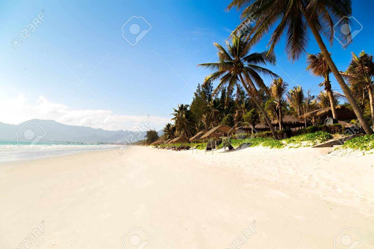 jungle island sea landscape with palm and tropical bech white