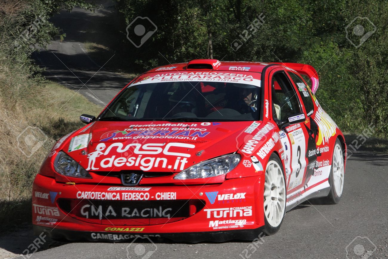 rally car peugeot 206 wrc stock photo, picture and royalty free