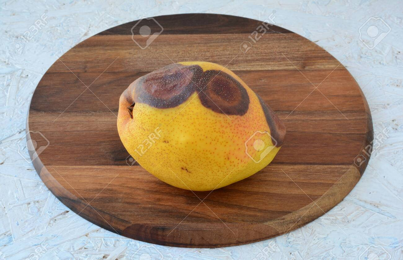 Rotten Pear On Round Wooden Chopping Board Over White Table Stock Photo Picture And Royalty Free Image Image 129753518