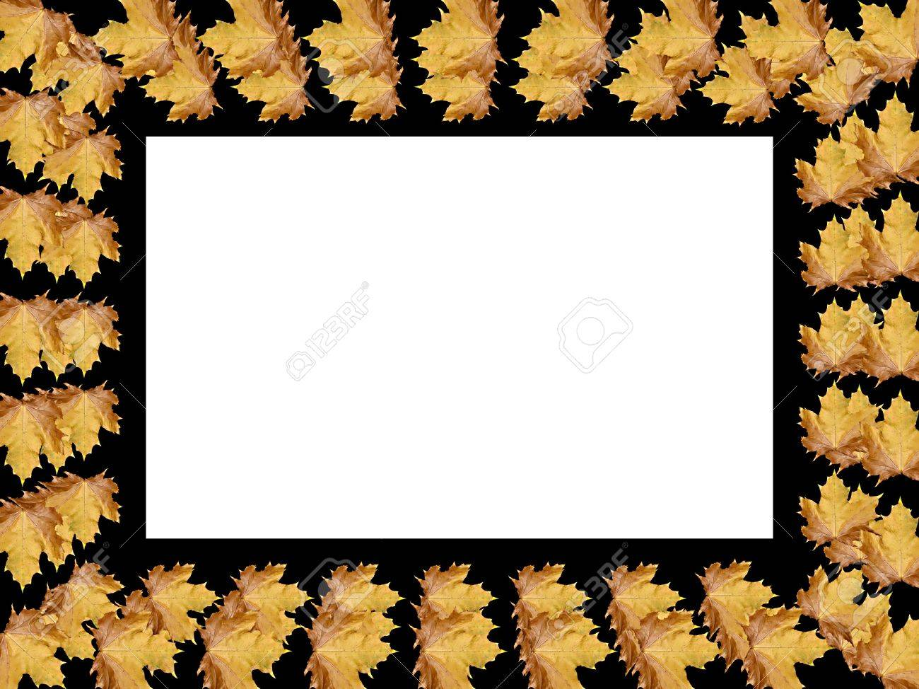 Frame from leaves with space for copy or photo Stock Photo - 5619706