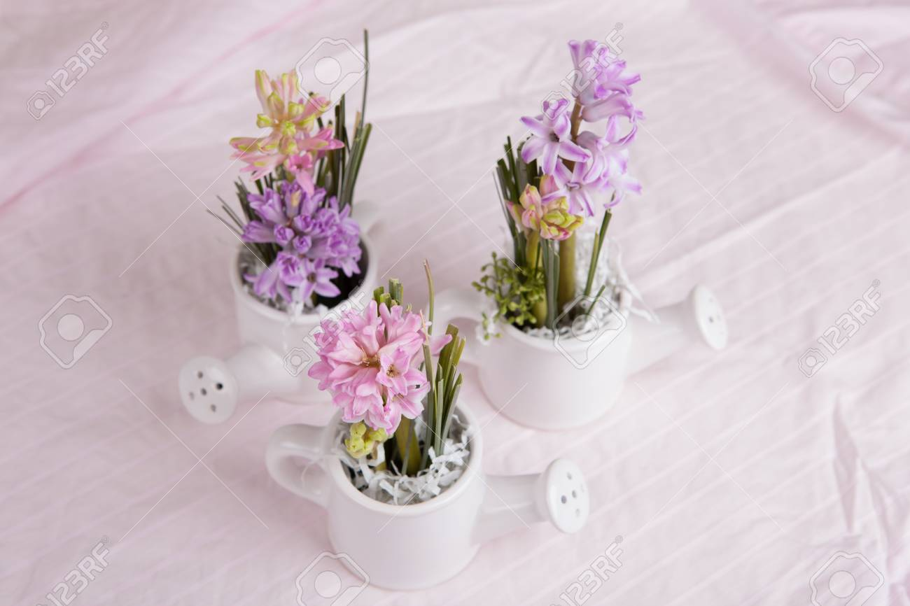 Hyacinth Flowers Bouquet In Kettles Composition Stock Photo, Picture ...