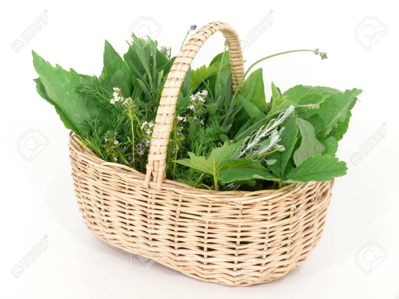 Wild herbs in basket Stock Photo - 14319778