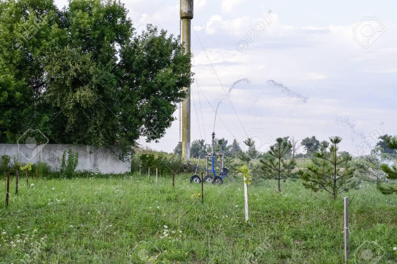 Bewässerungssystem Bewässerung Im Garten Bewässerung Der Sämlinge