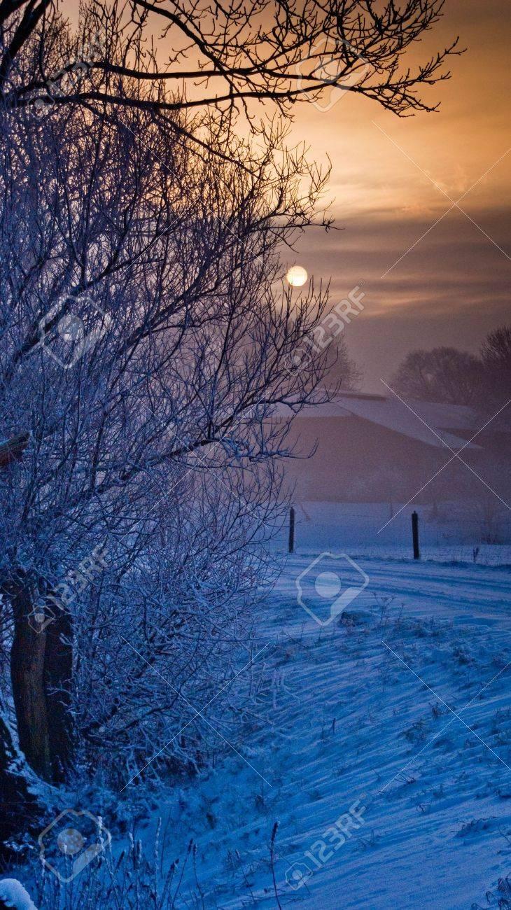 winter landscape - 16672743