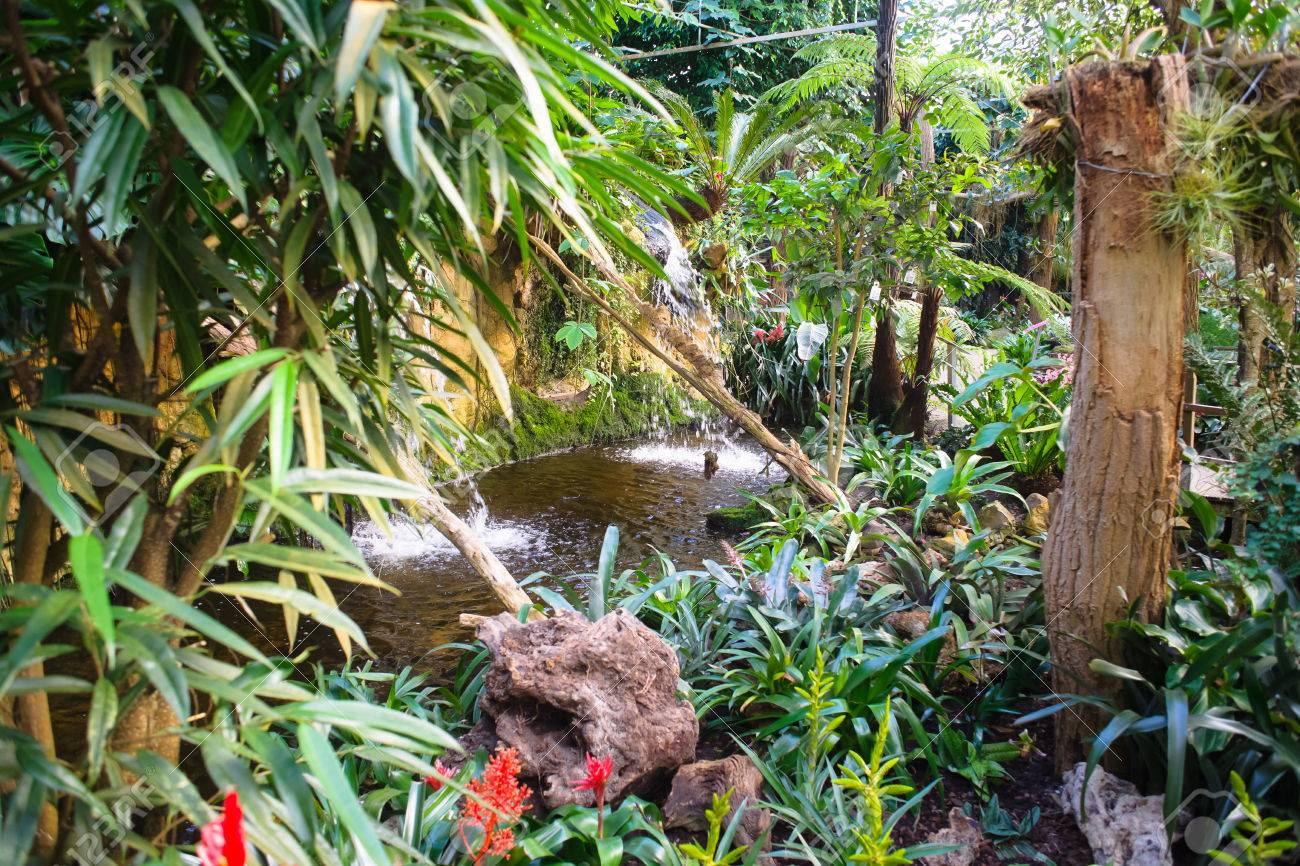 Wunderschoner Tropischer Garten Mit Seltenen Orchideen Tropischen