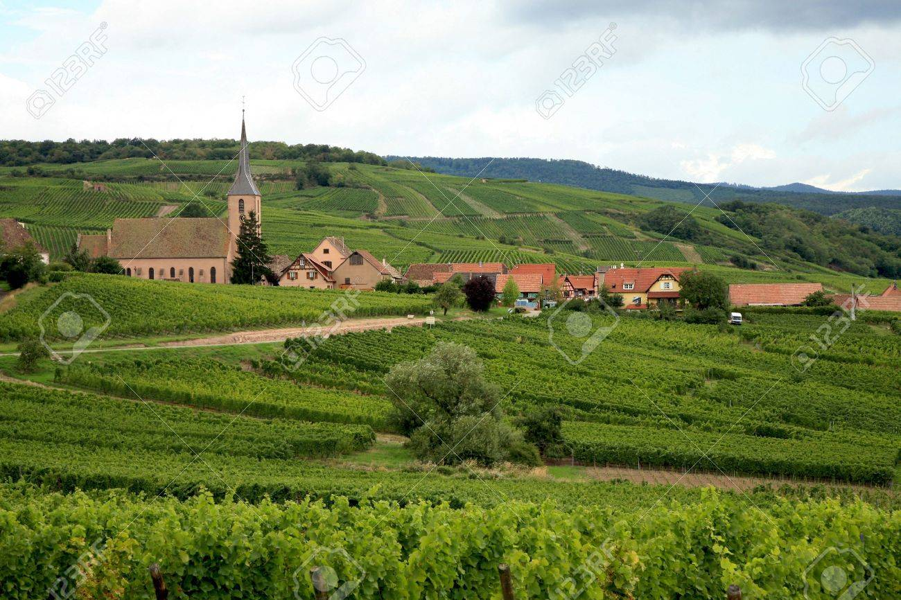 View from Vosges to village in France - Alsace. Route des vines. Stock Photo - 3665788