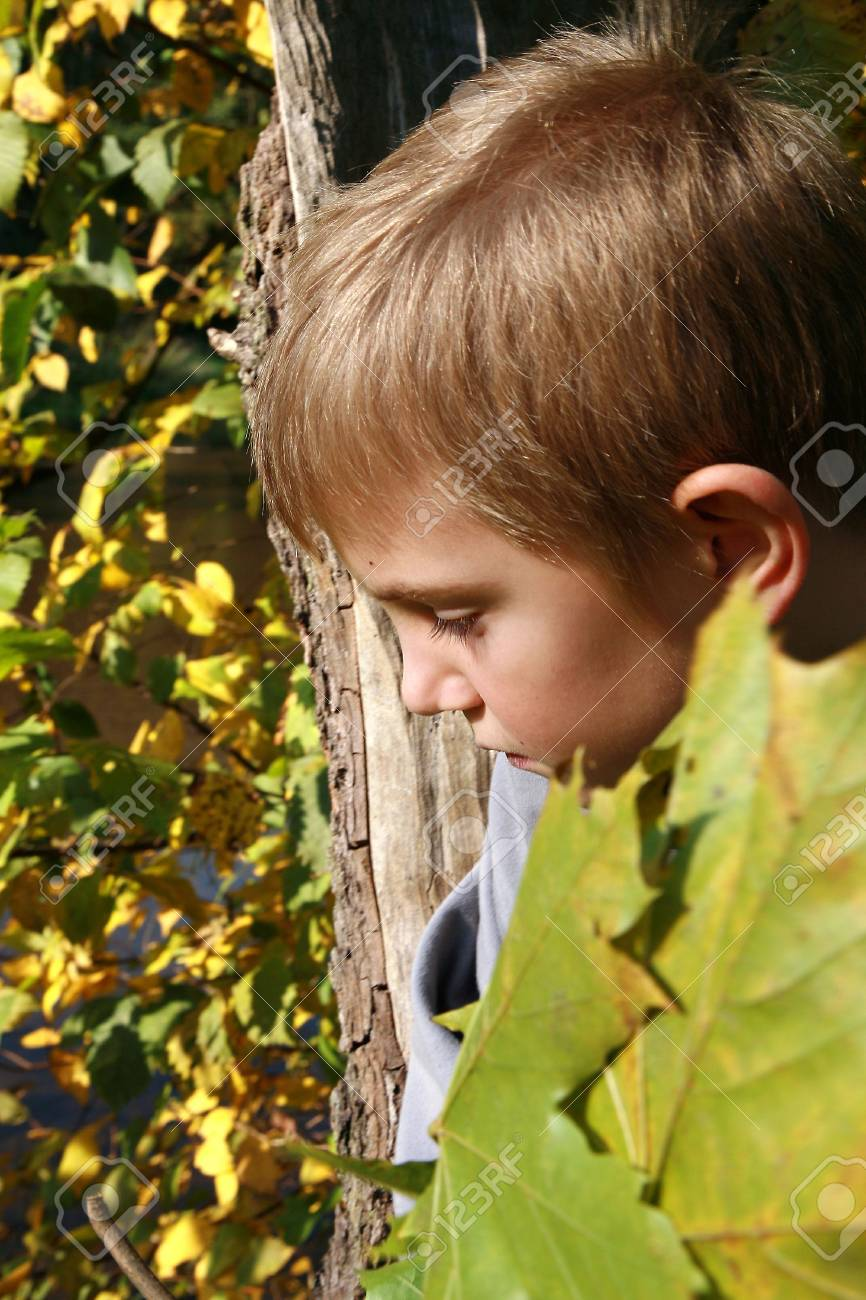 Little, caucasian, blonde boy with leaves. Autumn park. Stock Photo - 3677354