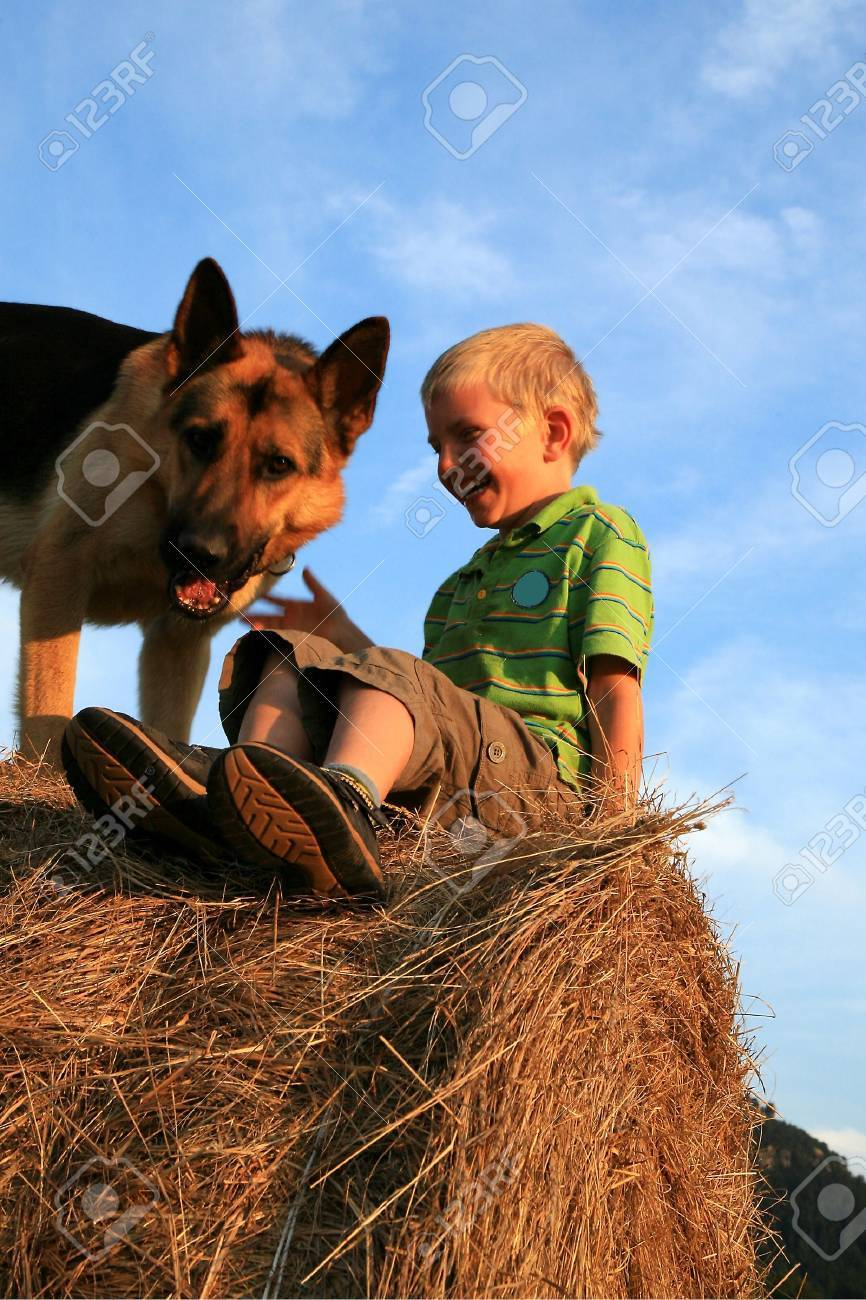 Six-year-old, white boy playing with the dog (Alsatian) on the meadow - summer in the mountains Stock Photo - 3676811