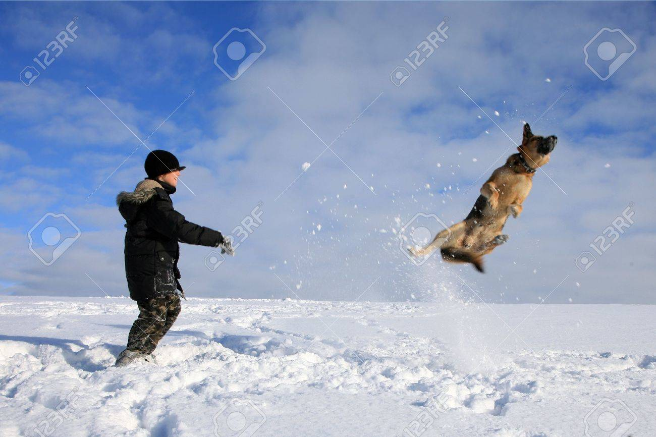 Teenage boy playing with dog in winter, sunny day on a meadow covered with snow. Stock Photo - 11981424