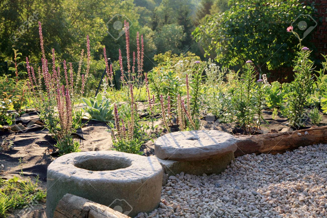Ordinaire Building New Gravel Terrace With Patch Of Perennials By Early Morning.  Landscaping In The Garden