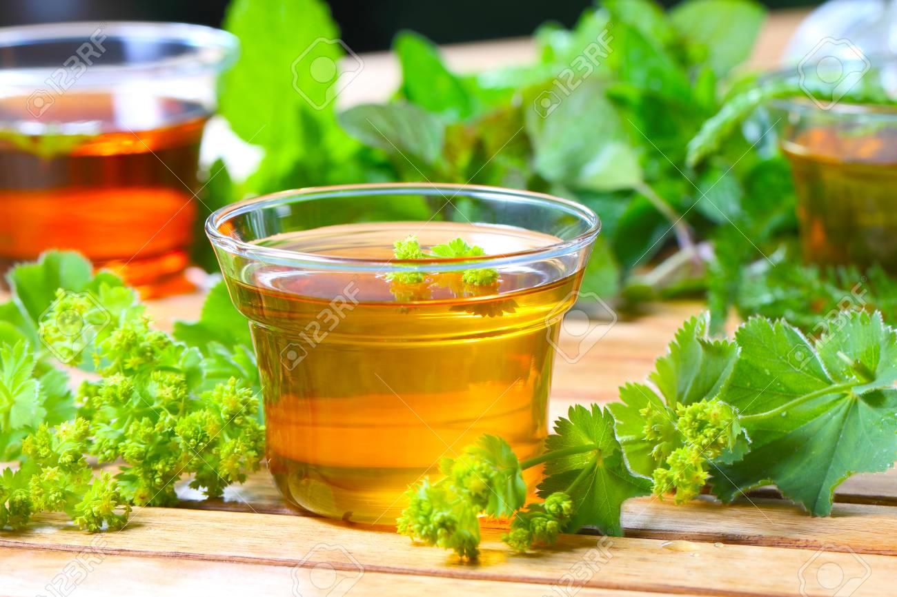 Herbal tea Stock Photo - 22929031