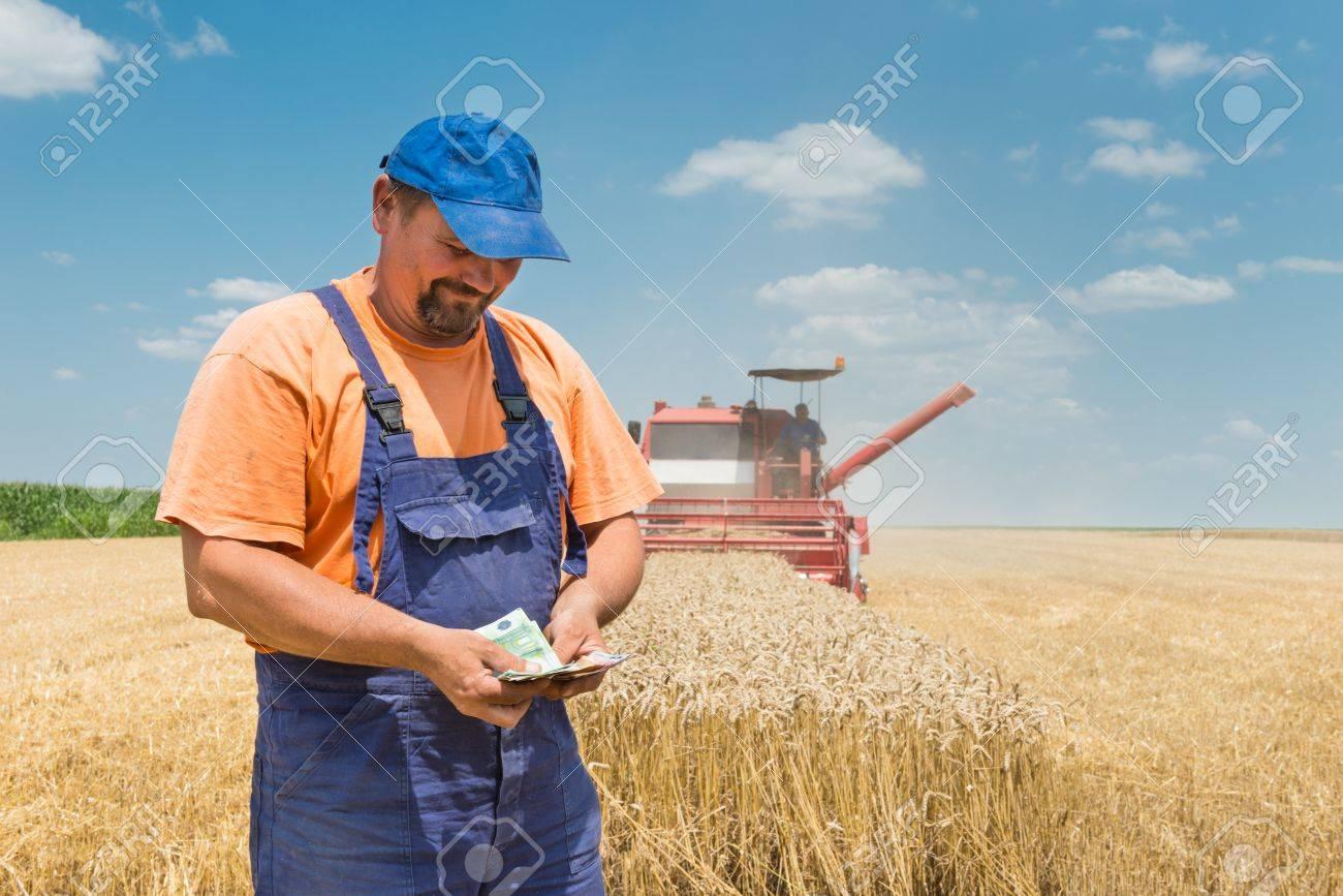 happy farmer during harvest wheat Stock Photo - 20685115