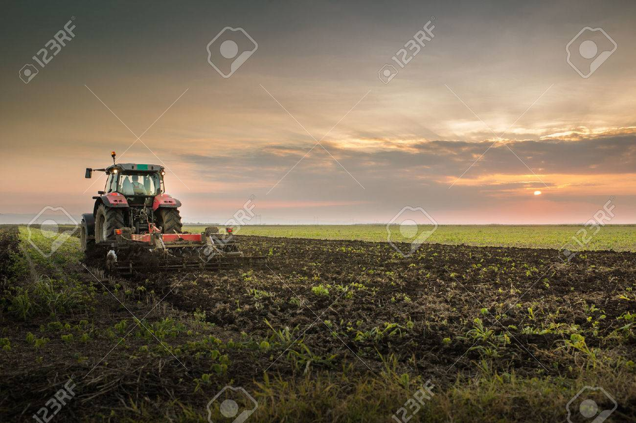 Tractor plowing a field at dusk - 47507150