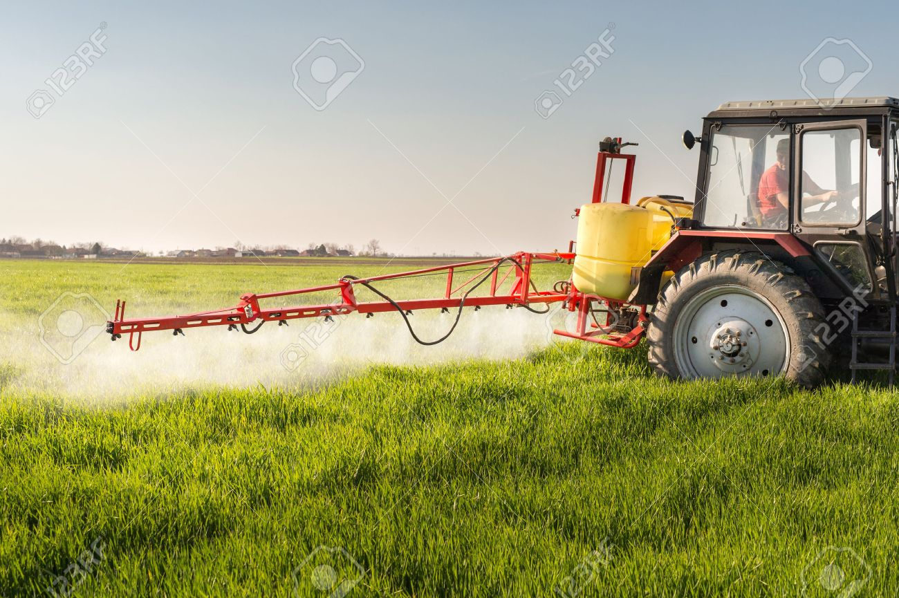 Tractor spraying wheat field with sprayer - 51228451