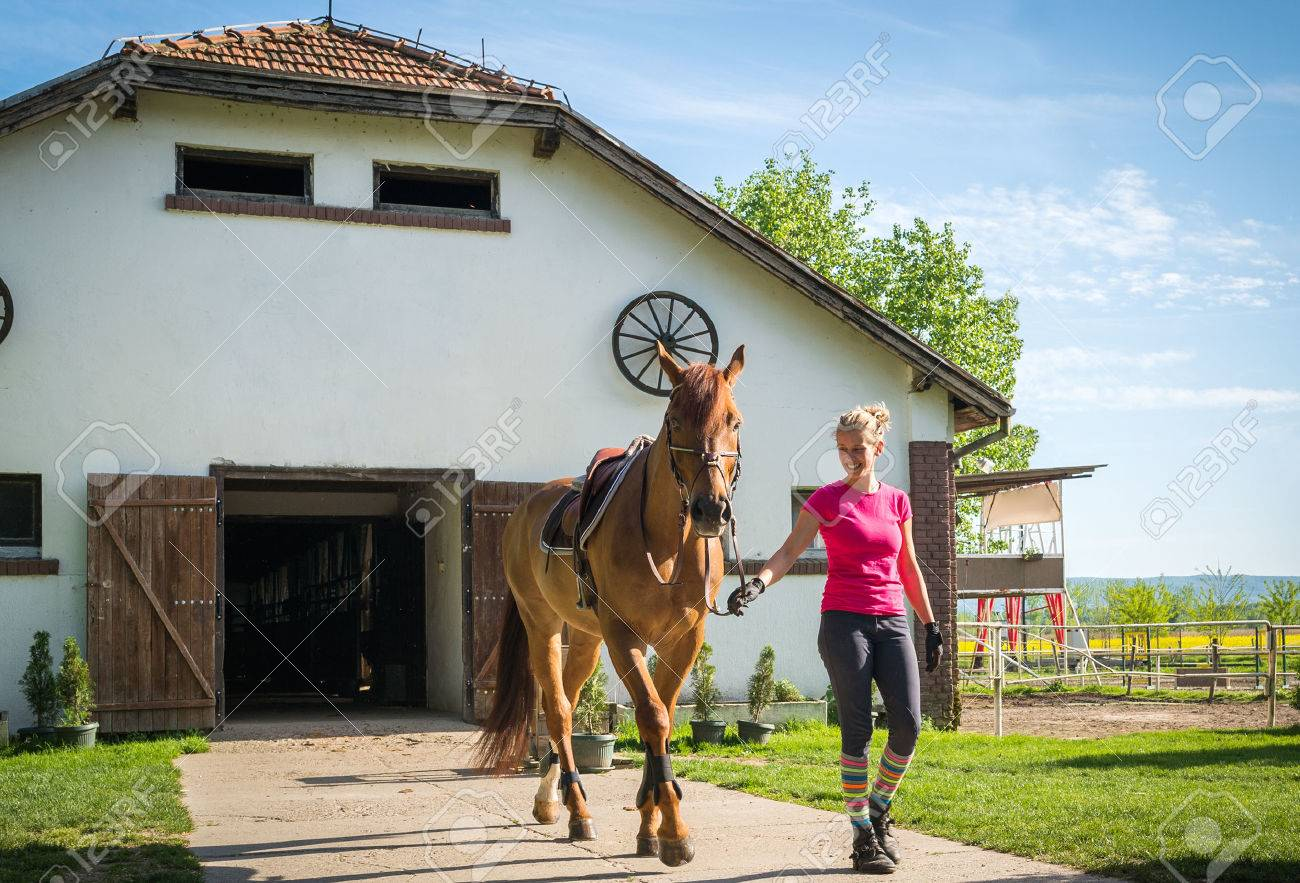 girl with horse in stable - 58683597