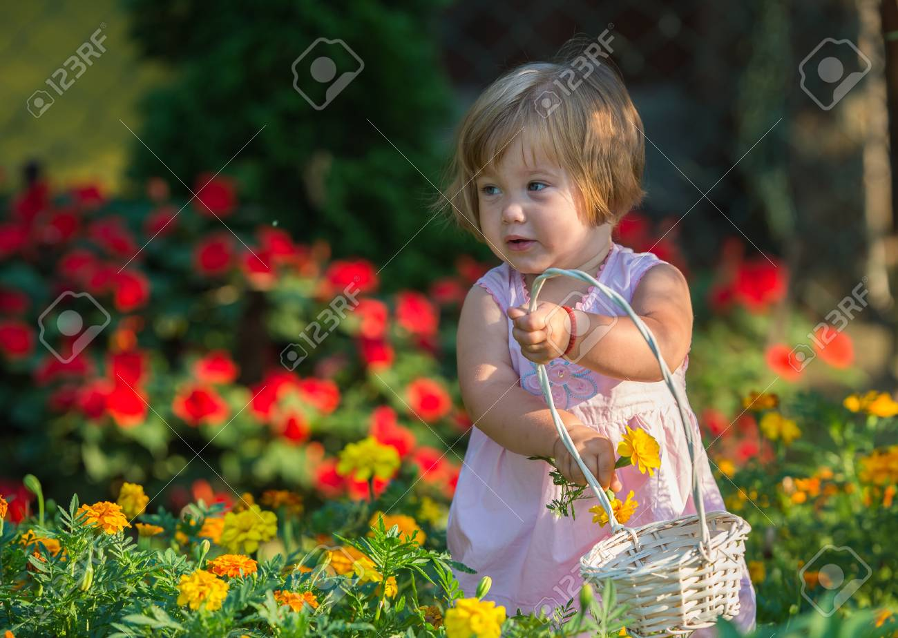 beautiful baby girl picking flowers from the garden stock photo