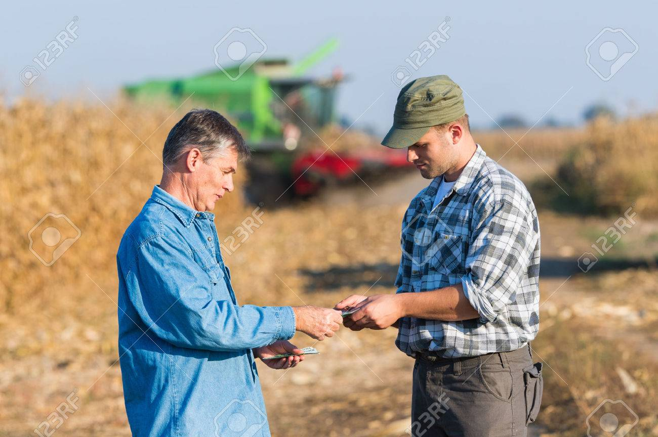 Happy young farmer after harvest of corn - 64218037