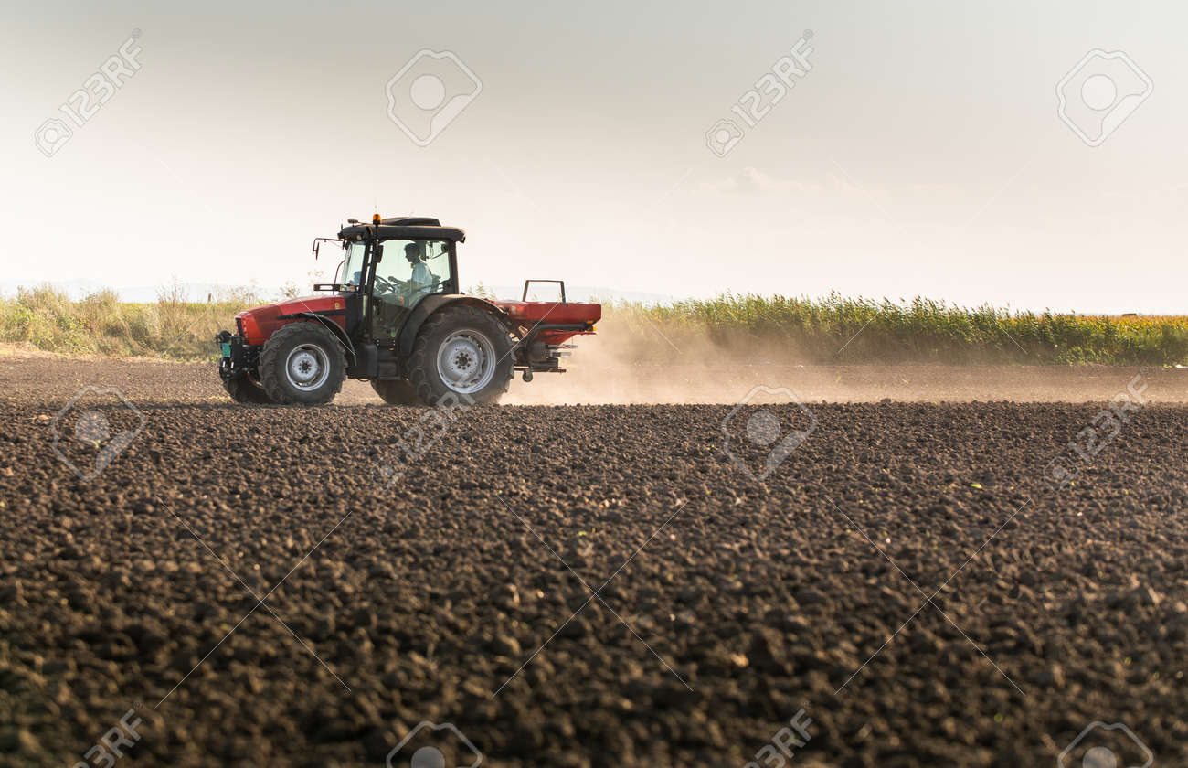Tractor spreading artificial fertilizers. Transport, agricultural. - 167093410