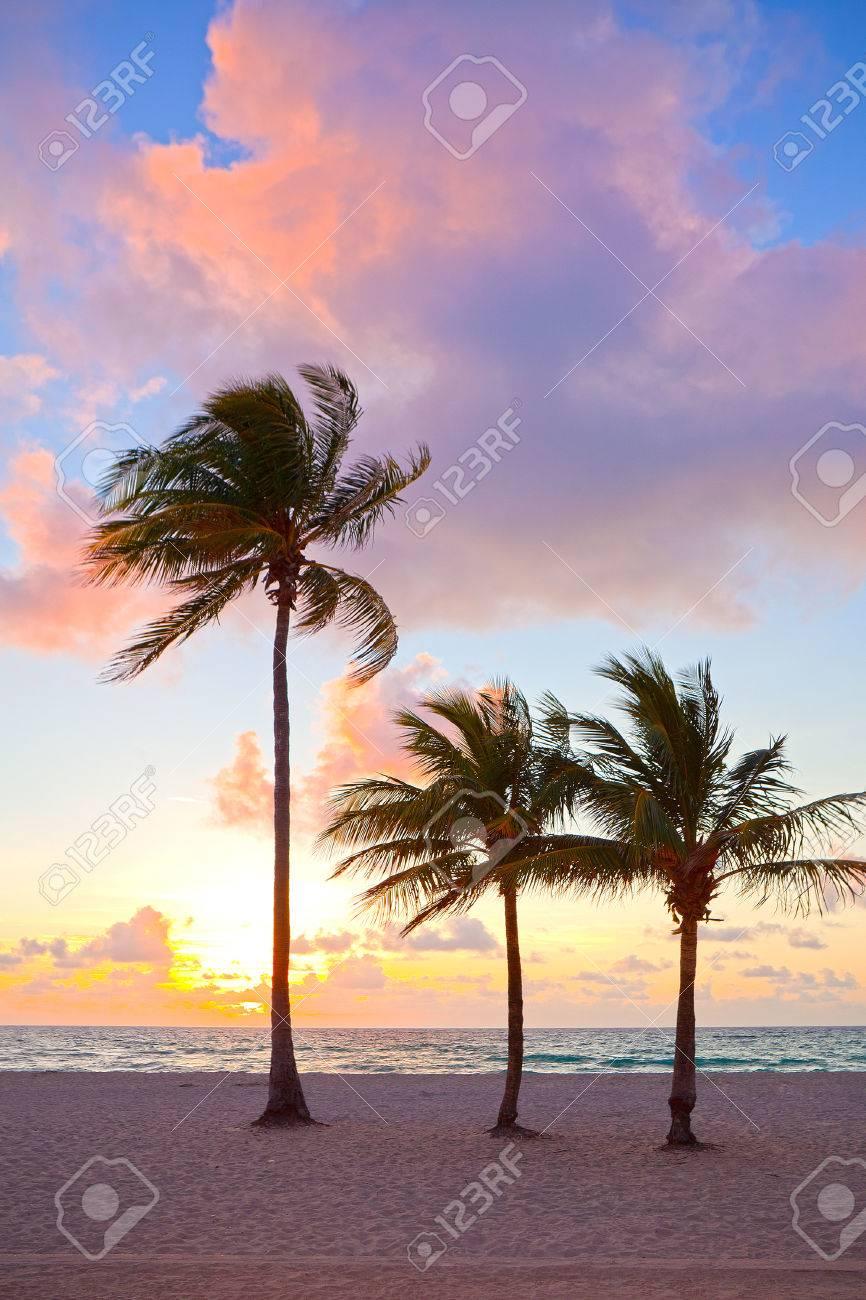 Dating-Standorte Miami