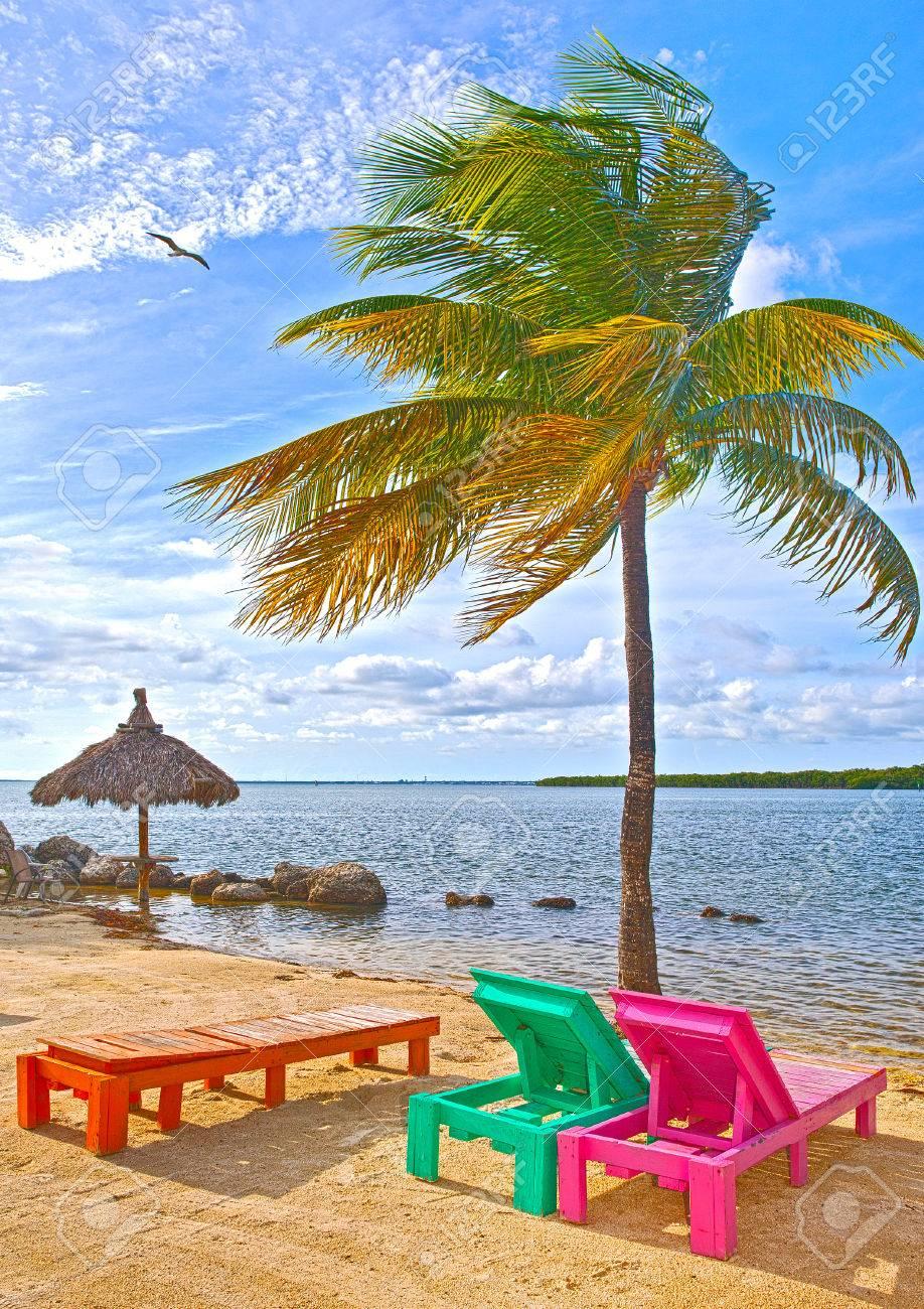 Sillones Coloridos.Sillones Coloridos En Una Playa Paraiso Tropical En Los Cayos De Florida Hermosa Aqua Verdes Aguas Del Oceano Colgando Palmeras Y Un Cielo Azul En
