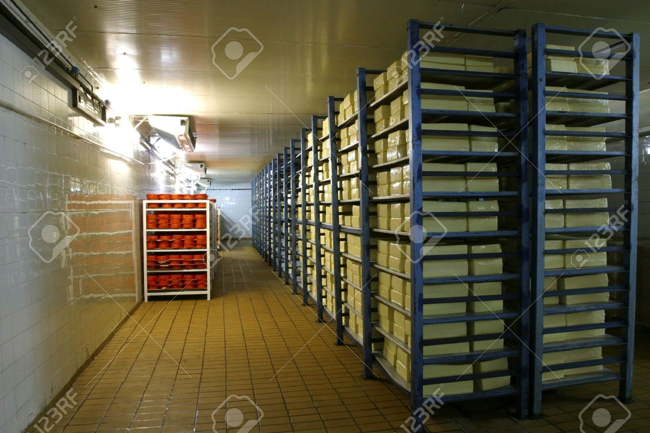 cheese in cold storage in modern dairy Stock Photo - 748180 & Cheese In Cold Storage In Modern Dairy Stock Photo Picture And ...