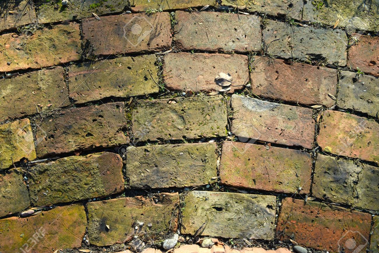Old Bricks As A Walkway In The Garden Stock Photo, Picture And ...