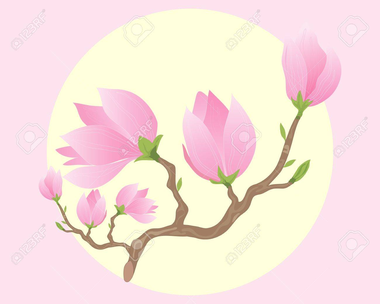 An illustration of a branch of beautiful pink magnolia flowers an illustration of a branch of beautiful pink magnolia flowers opening up under a big yellow mightylinksfo
