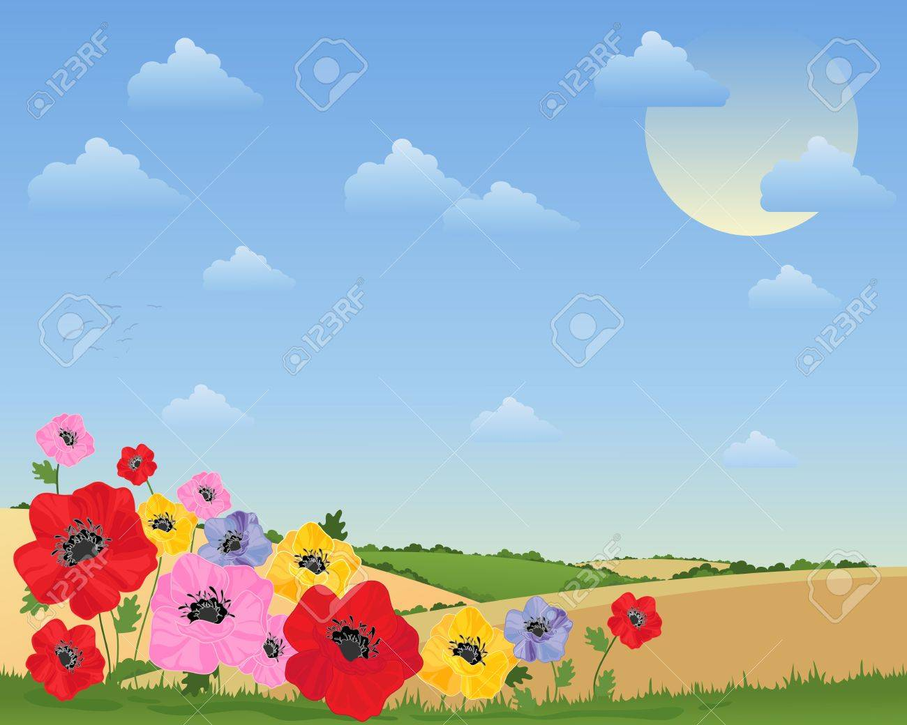 an illustration of colorful poppy flowers in front of a summer landscape with rolling hills hedgerows and fluffy clouds Stock Vector - 14372214