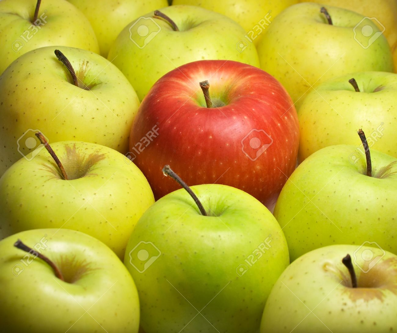 Individual - one different - closeup of red apple among yellow-green apples - 5865093