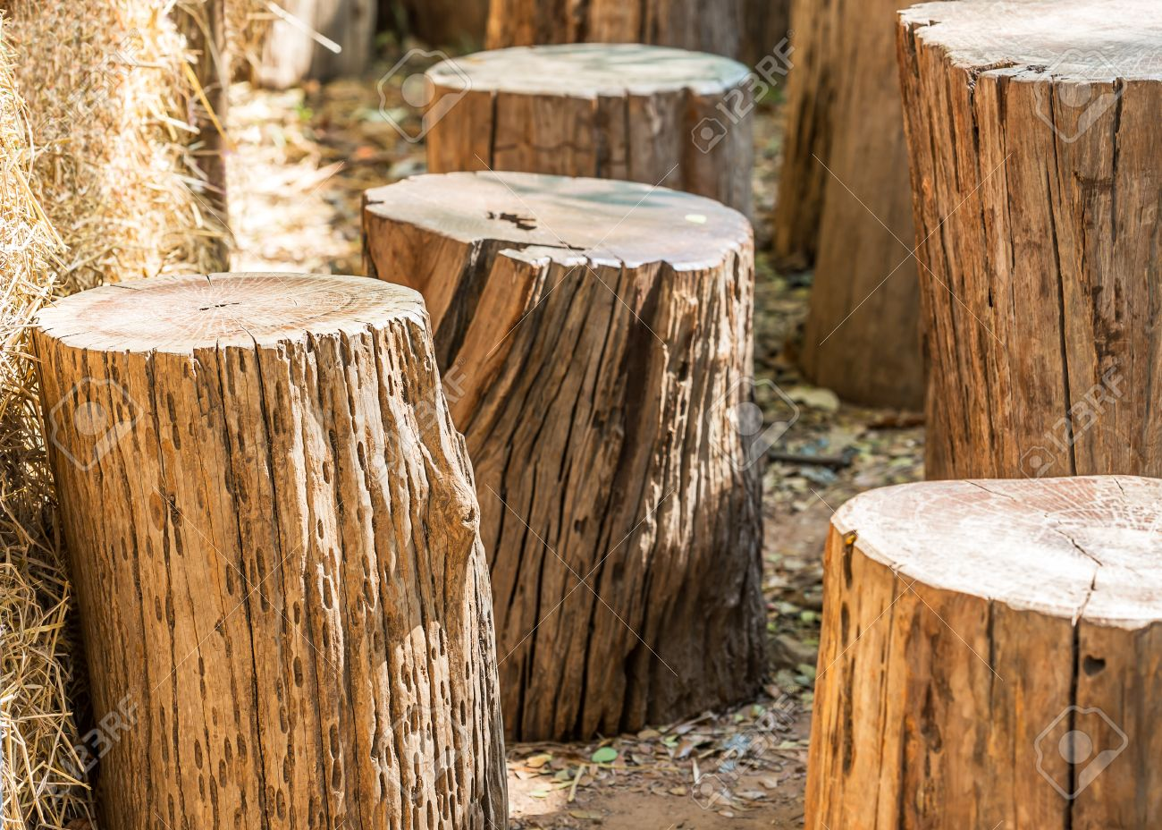 Natural garden furniture made from wooden log Stock Photo   35855175. Natural Garden Furniture Made From Wooden Log Stock Photo  Picture