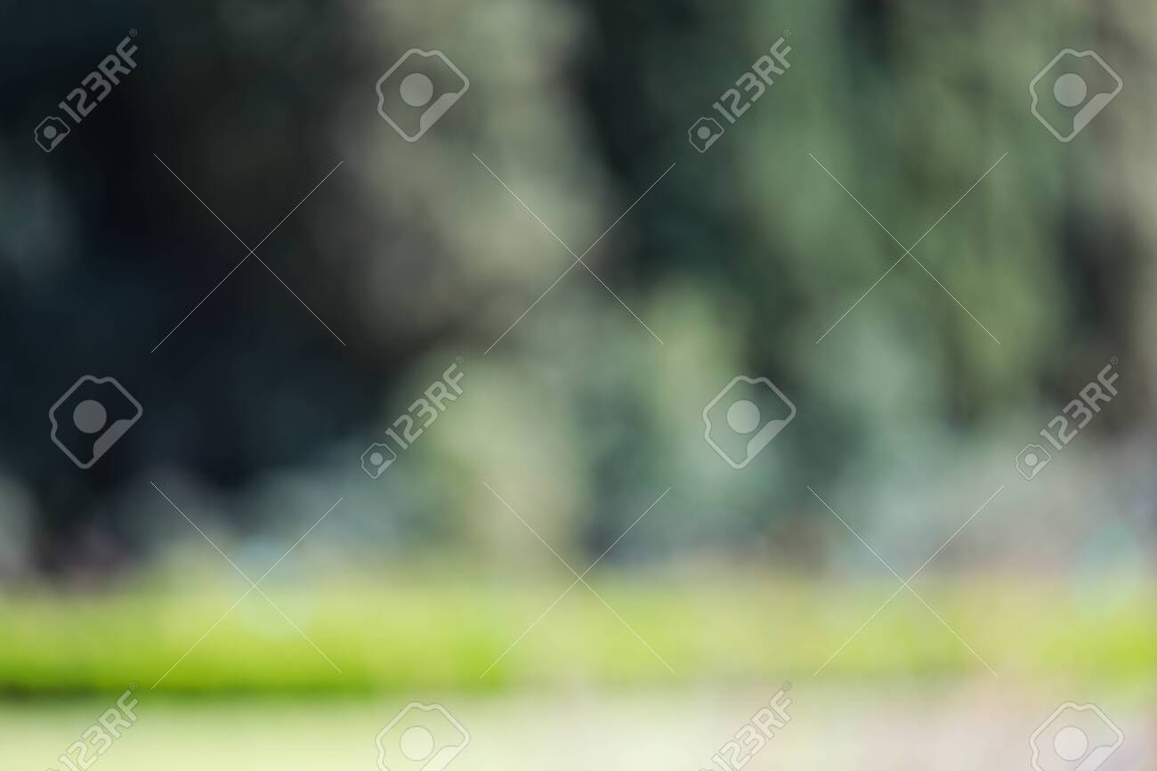 Blur park with bokeh light background, nature, garden, spring and summer season - Image - 126576940