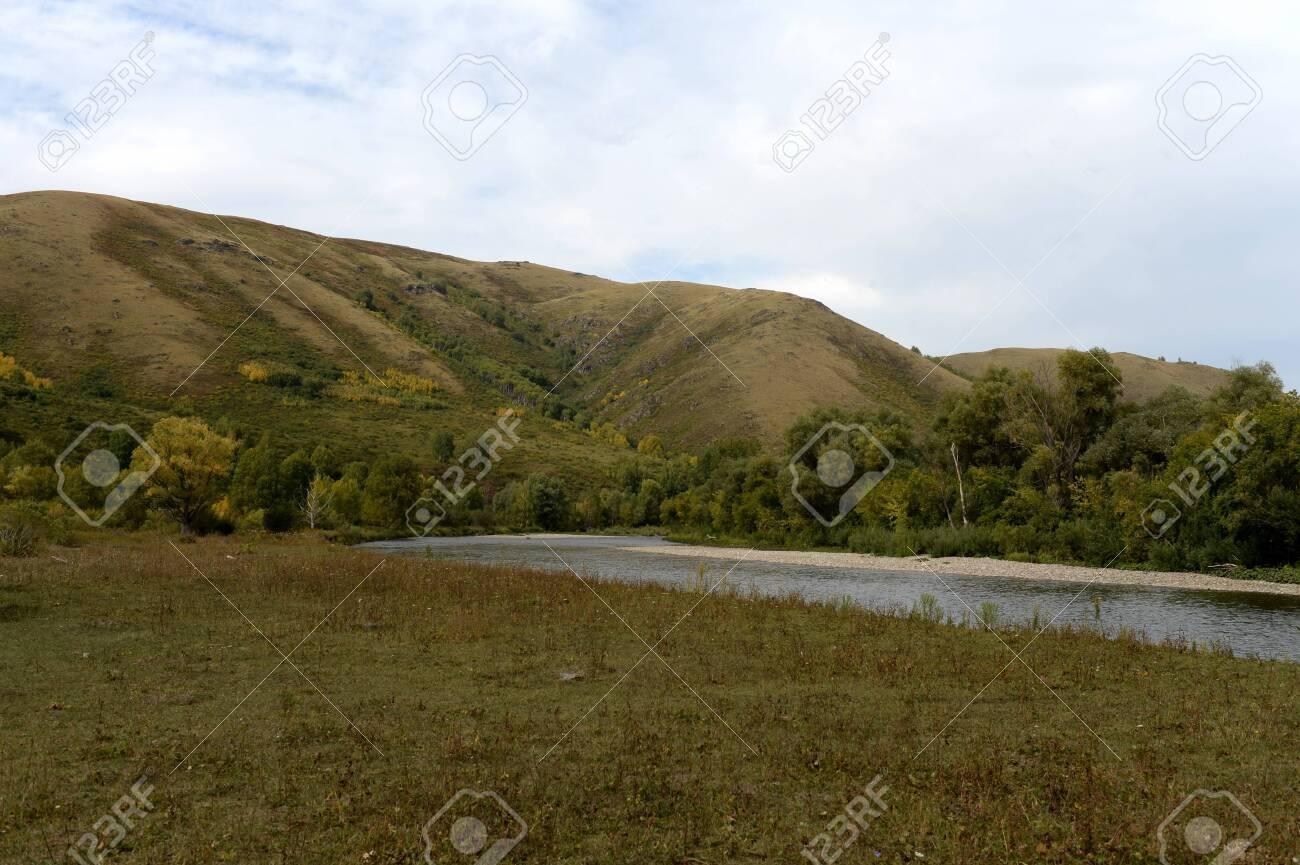 The Inya river in the Altai region. Western Siberia. Russia - 130513930