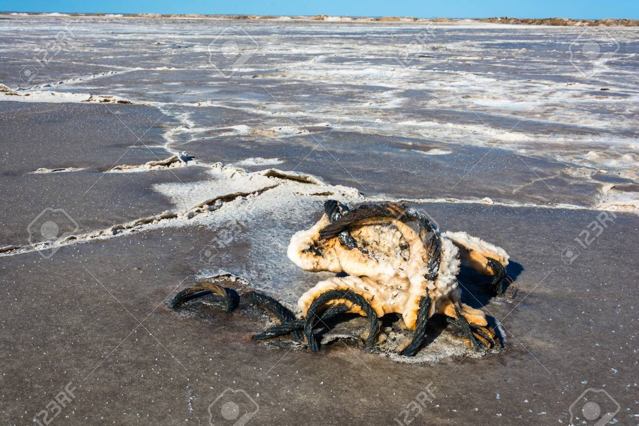 Steel Rope Covered With Severe Corrosion From The Salt Lake ...
