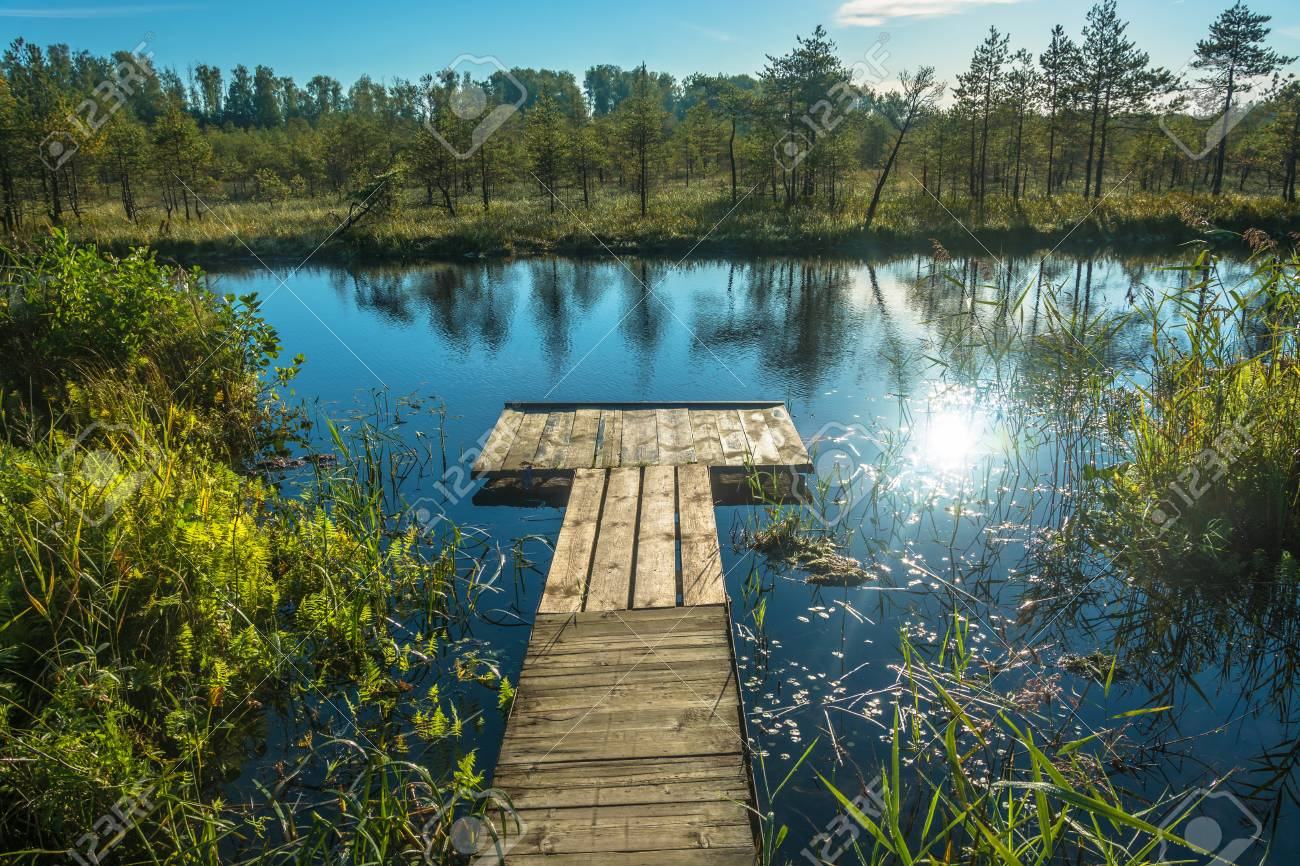 wooden footbridge on a small lake with a bright sun glare on stock