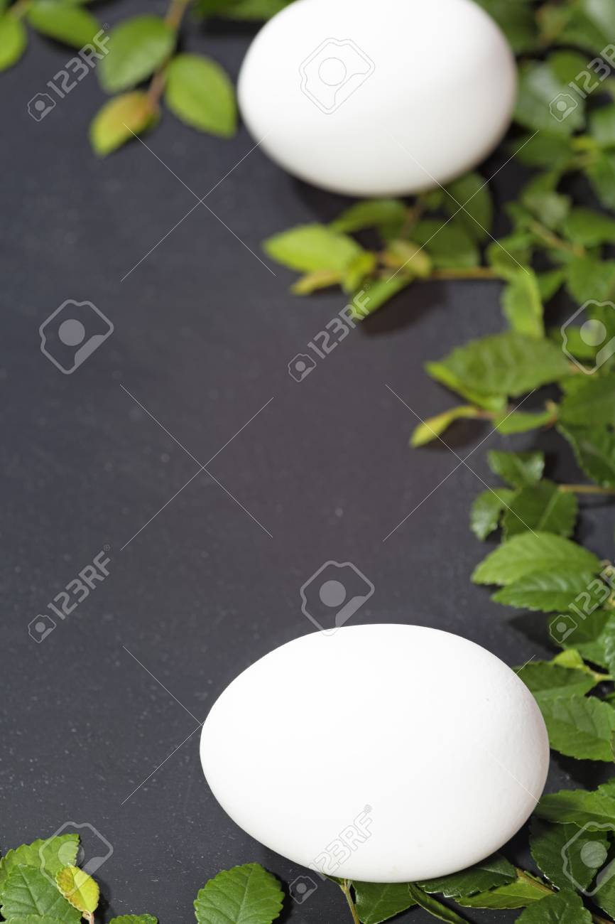 Slate slate optic framed with elm branches These eggs as a symbol of Easter Stock Photo - 18310565