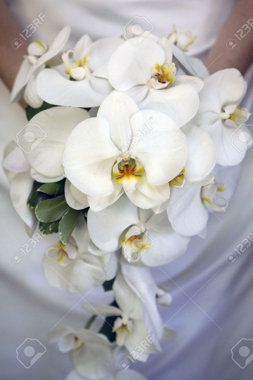 Bride Id Holding Orchid Flower Bouquet Stock Photo, Picture And ...
