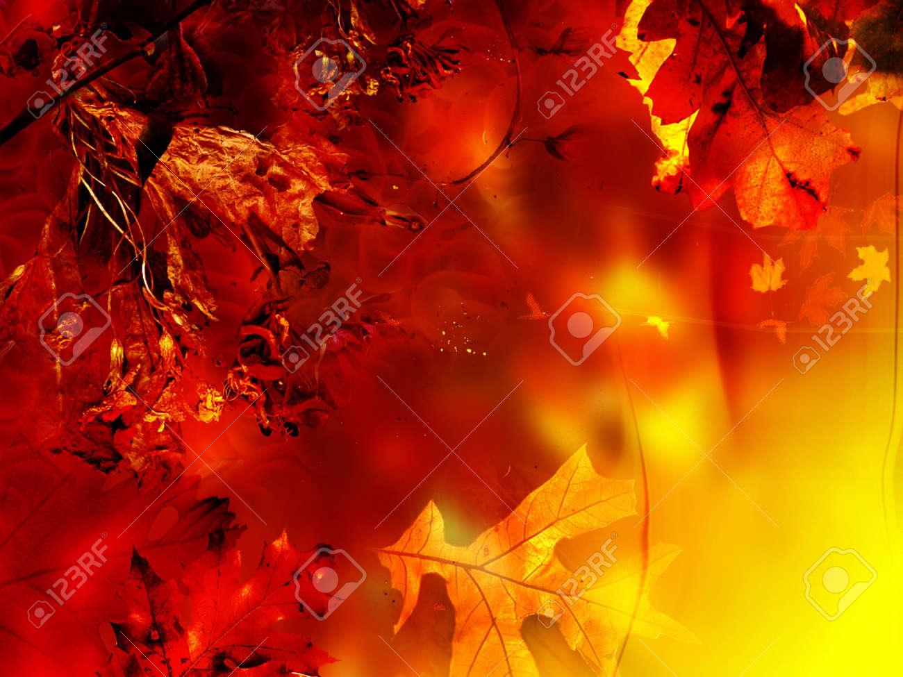 Background seasonal, abstract floral Stock Photo - 246059