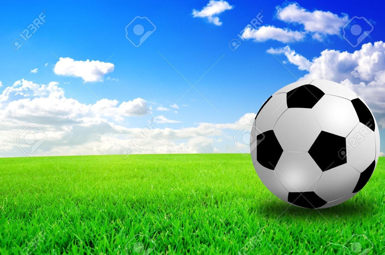 football field soccer stadium on the green grass blue sky Stock Photo - 13910821