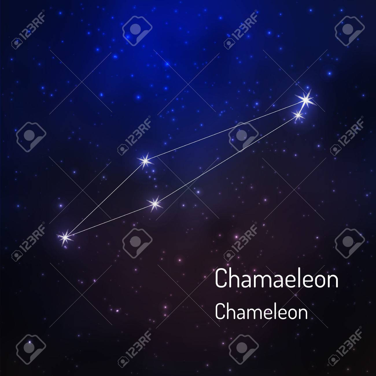 Chameleon constellation in the night starry sky. Vector illustration - 73033686
